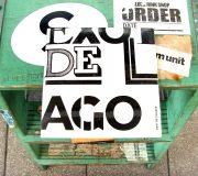 EXOTICO DE LAGO/EXOTICO DE LAGO